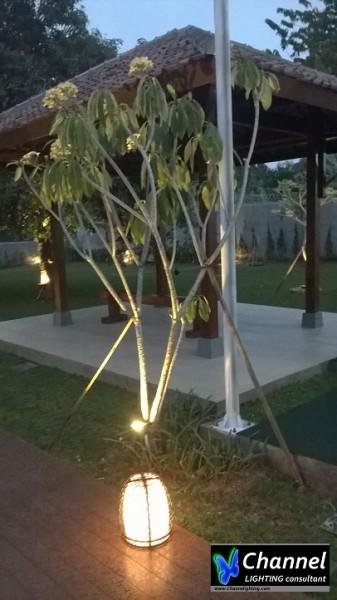 Decorative Landscape Lighting